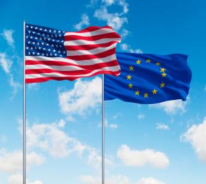The EU Member States mandated the European Commission to negotiate TTIP on their behalf.