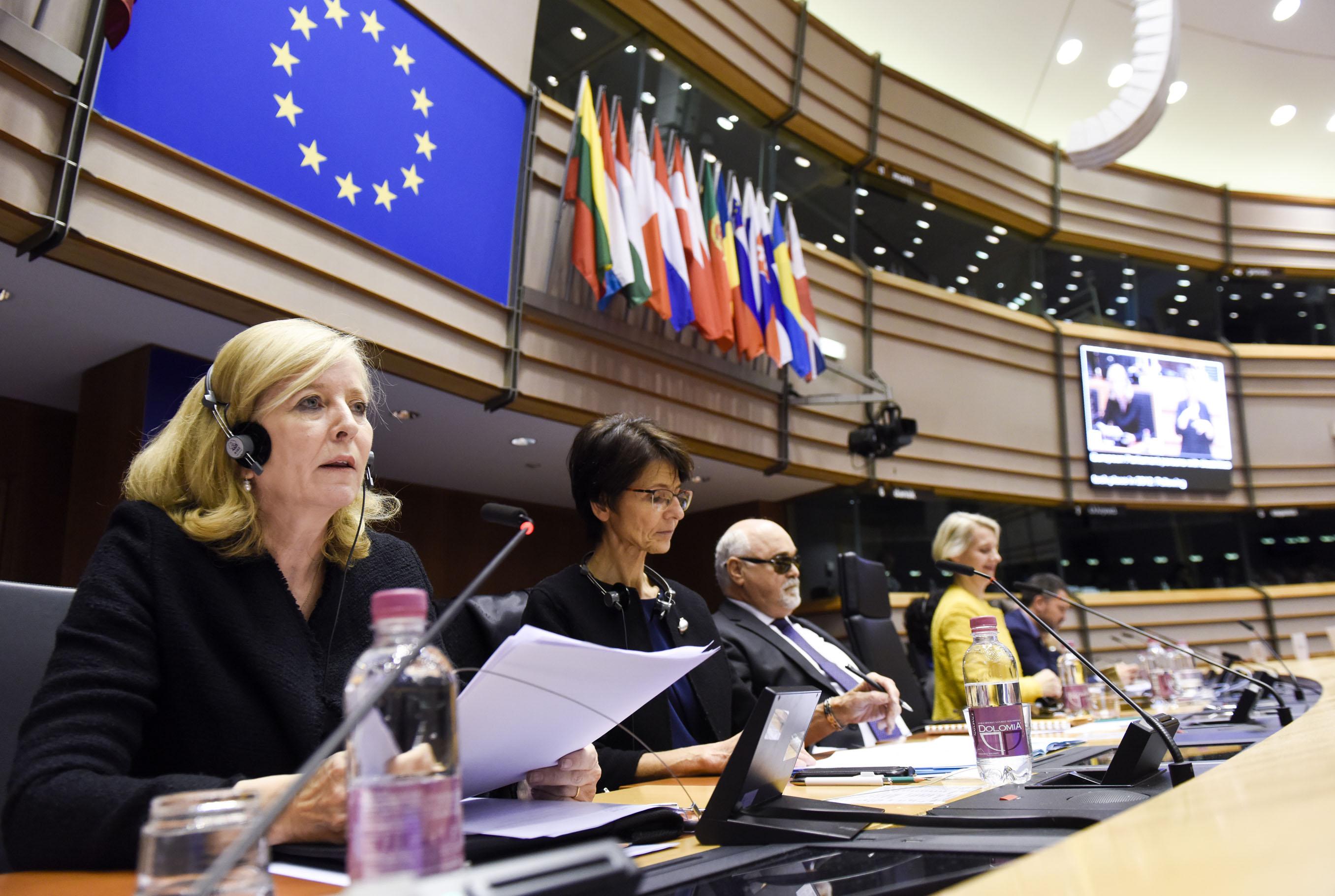 De Europese ombudsvrouw spreekt tijdens het vierde Europees Parlement van personen met een handicap.